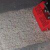Frezarka do betonu Trelawny TFP200 - Wypożyczalnia Trójmiasto Gdańsk, Gdynia, Sopot