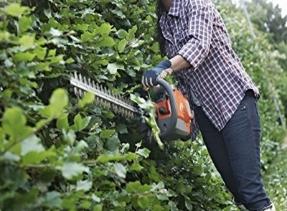 Ogród i utrzymanie zieleni